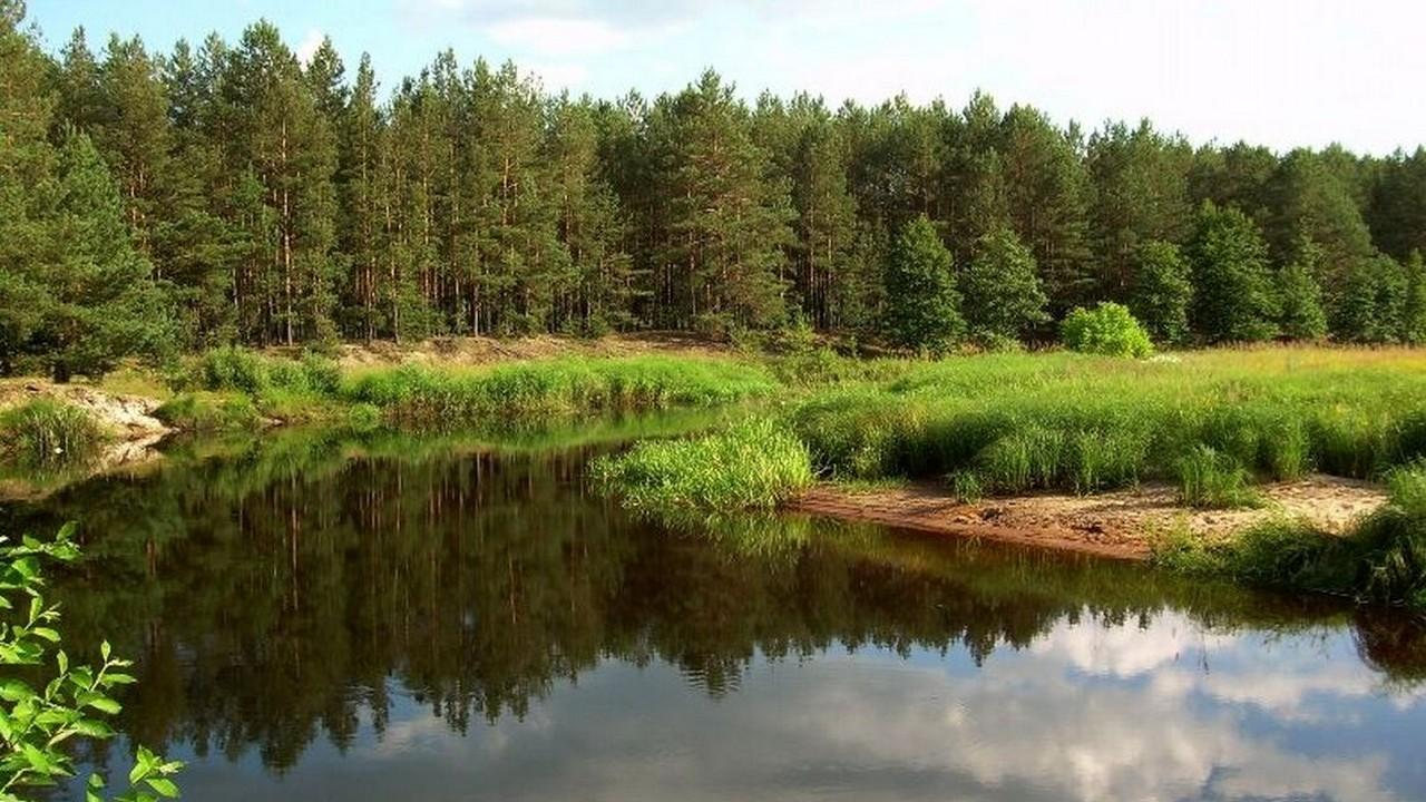 Сьогодні – Всесвітній день заповідників і національних парків - заповідник - 11 zapovednyk4