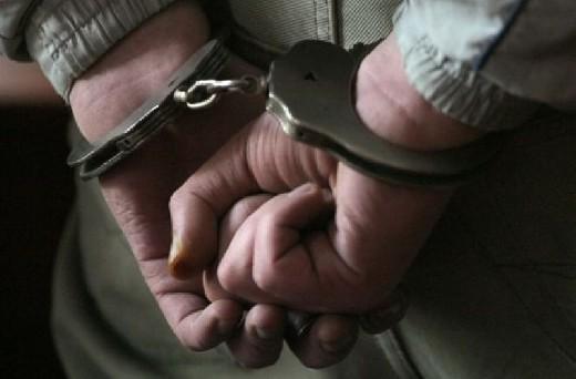 На Обухівщині поліцейські затримали групу серійних будинкових крадіїв -  - 12312504520x520