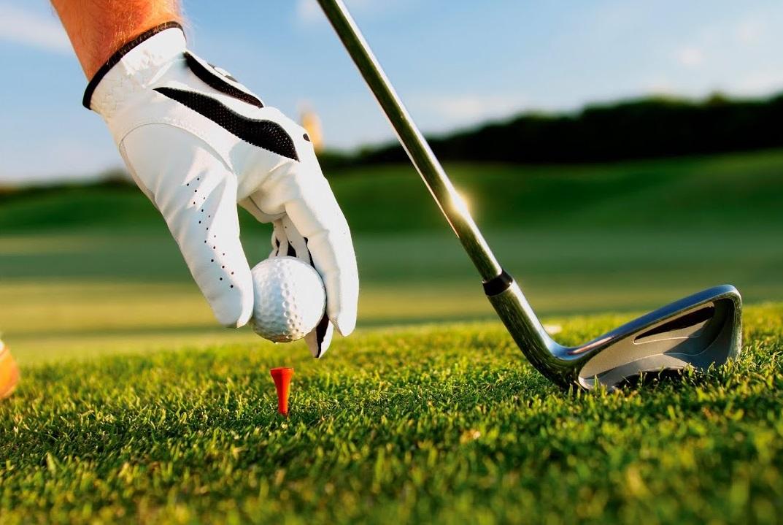 15_golf Гольф поза законом: 26 га лісу під Києвом через суд повернуто у державну власність
