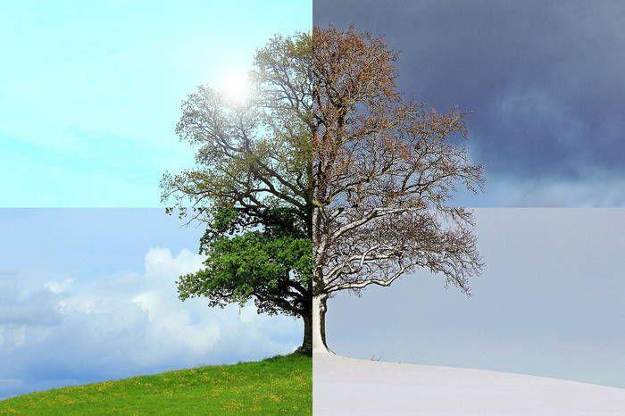 Як змінювалася погода в Україні протягом 117 років? - зміна клімату - 17 pogoda Ukrayna2
