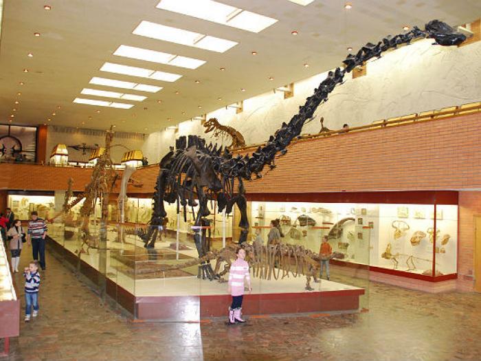 """""""Втрачений світ динозаврів"""": в столичному музеї відбудеться пізнавальний квест -  - 18 16"""