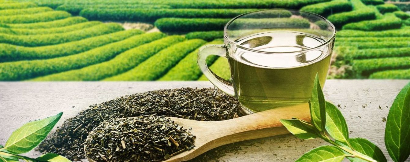 19_chaj Вчені стверджують, що поціновувачі зеленого чаю живуть довше
