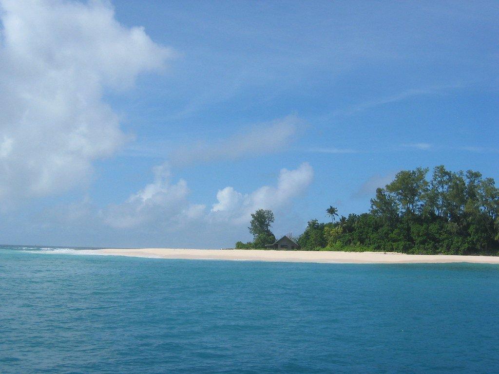 Куплений для порятунку співочого птаха острів заполонили туристи -  - 19 ostrov