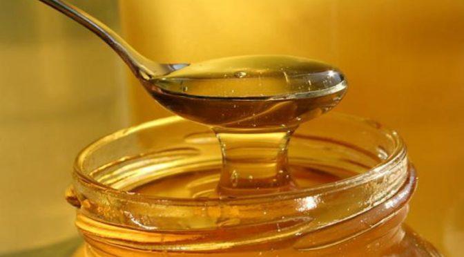 """Скільки """"дьогтю"""": український мед перевірять на якість -  - 1dd39d 672x372.jpg.pagespeed.ce .vnQt1xLsvg 1"""