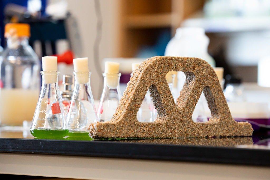 20_beton Вчені винайшли «живий бетон», який здатний регенерувати