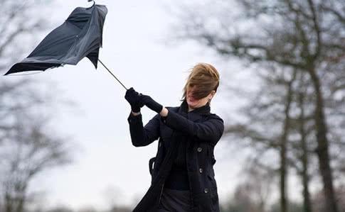 20_veter Мешканців Київщини попередили про небезпечні пориви вітру