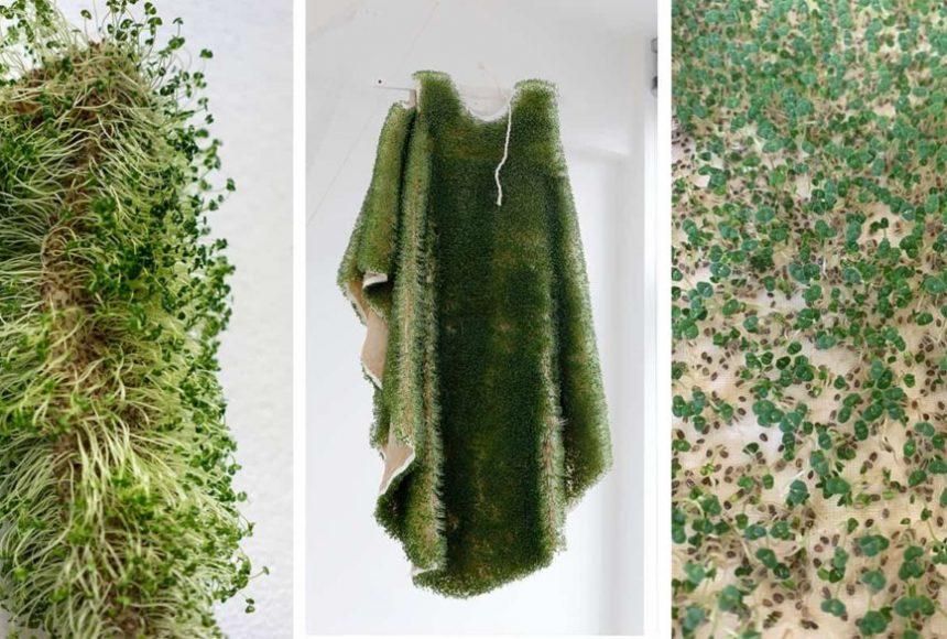 Плащ із насіння чіа: українка створює одяг із екологічного «хутра» -  - 22 ekohutro
