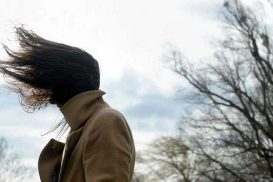 Штормове попередження в Україні: поради фахівців щодо дій при посиленні поривів вітру - шквал, погода, вітер - 22 veter