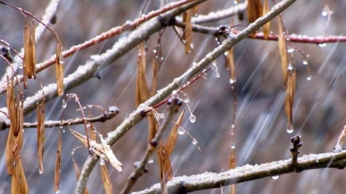 Погода на Київщині: 23 січня атмосферний фронт зменшить свій вплив, але шквали залишаться - погода - 23 pogoda2