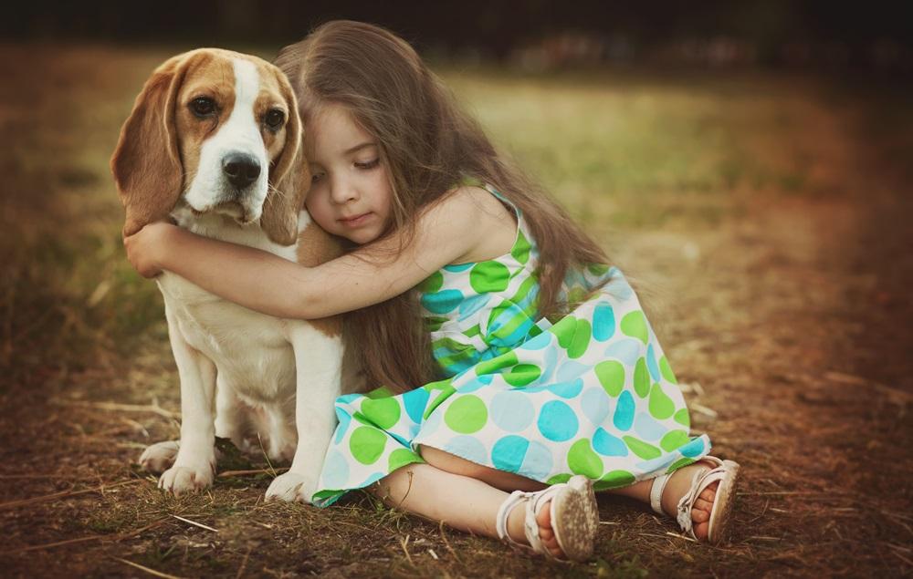 Учні 4-6 класів Київщини можуть взяти участь у конкурсі «Гуманне ставлення до тварин» -  - 23 tvaryny