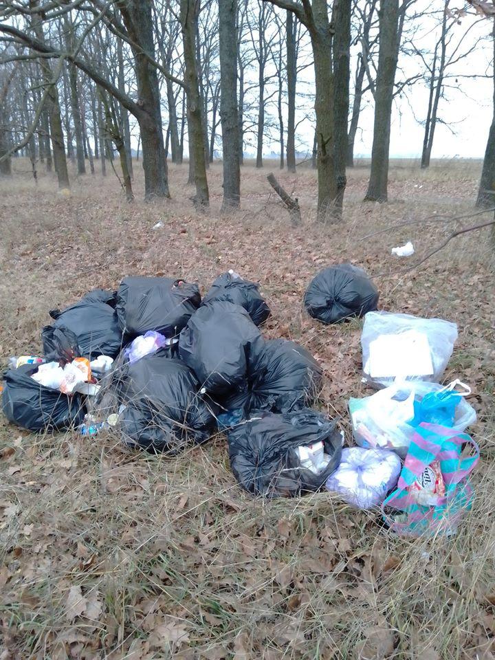 Макарівщина потопає у смітті: люди б'ють на сполох - стихійні сміттєзвалища, сміття, Макарівський район - 24 zvalyshha2