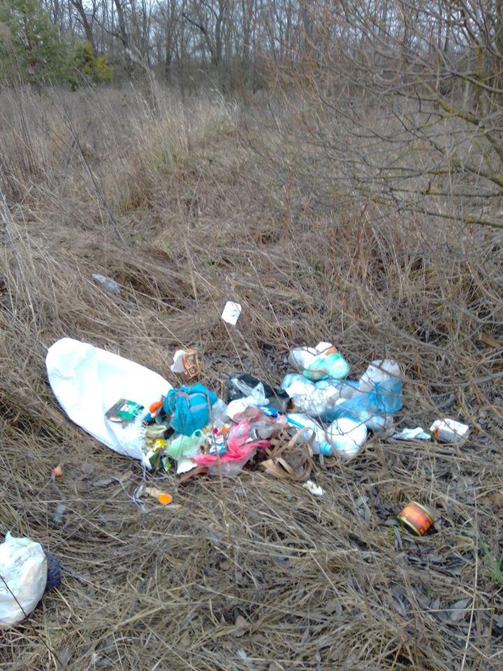Макарівщина потопає у смітті: люди б'ють на сполох - стихійні сміттєзвалища, сміття, Макарівський район - 24 zvalyshha3
