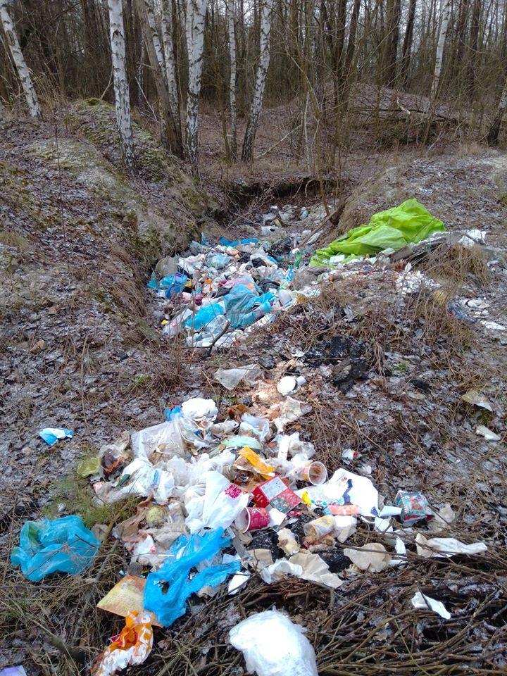 Макарівщина потопає у смітті: люди б'ють на сполох - стихійні сміттєзвалища, сміття, Макарівський район - 24 zvalyshha5