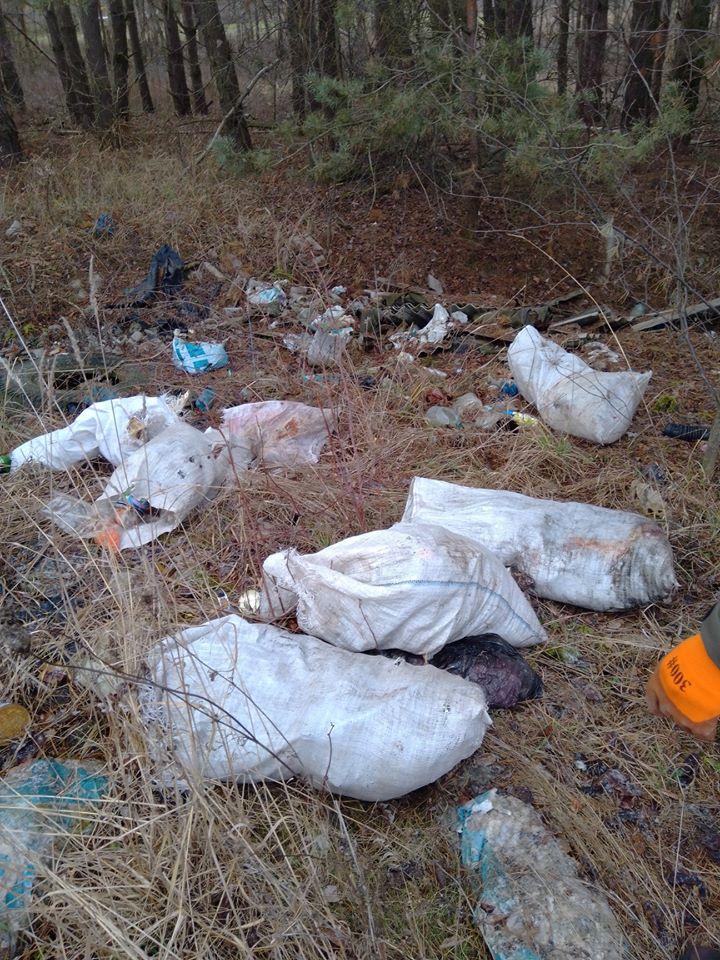 Макарівщина потопає у смітті: люди б'ють на сполох - стихійні сміттєзвалища, сміття, Макарівський район - 24 zvalyshha6