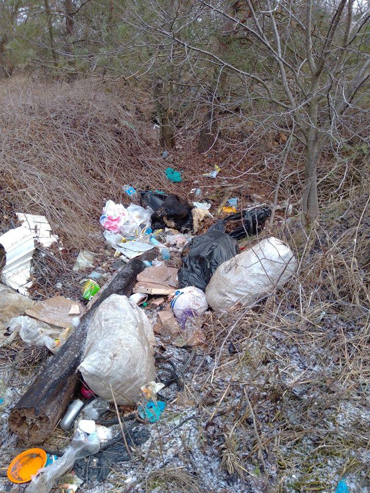 24_zvalyshha7 Макарівщина потопає у смітті: люди б'ють на сполох
