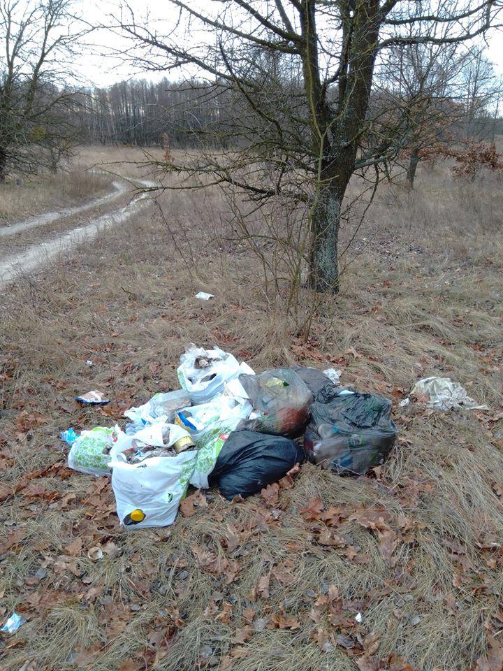 Макарівщина потопає у смітті: люди б'ють на сполох - стихійні сміттєзвалища, сміття, Макарівський район - 24 zvalyshha8