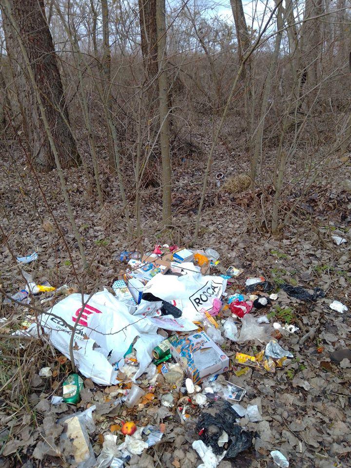 Макарівщина потопає у смітті: люди б'ють на сполох - стихійні сміттєзвалища, сміття, Макарівський район - 24 zvalyshha9