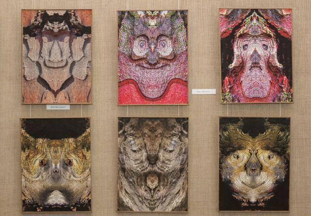 """""""Алюзії натури Миколи Сиротенка"""": в столичній бібліотеці триває виставка фотомитця -  - 76697365 10156949748716743 3149176948933001216 n"""