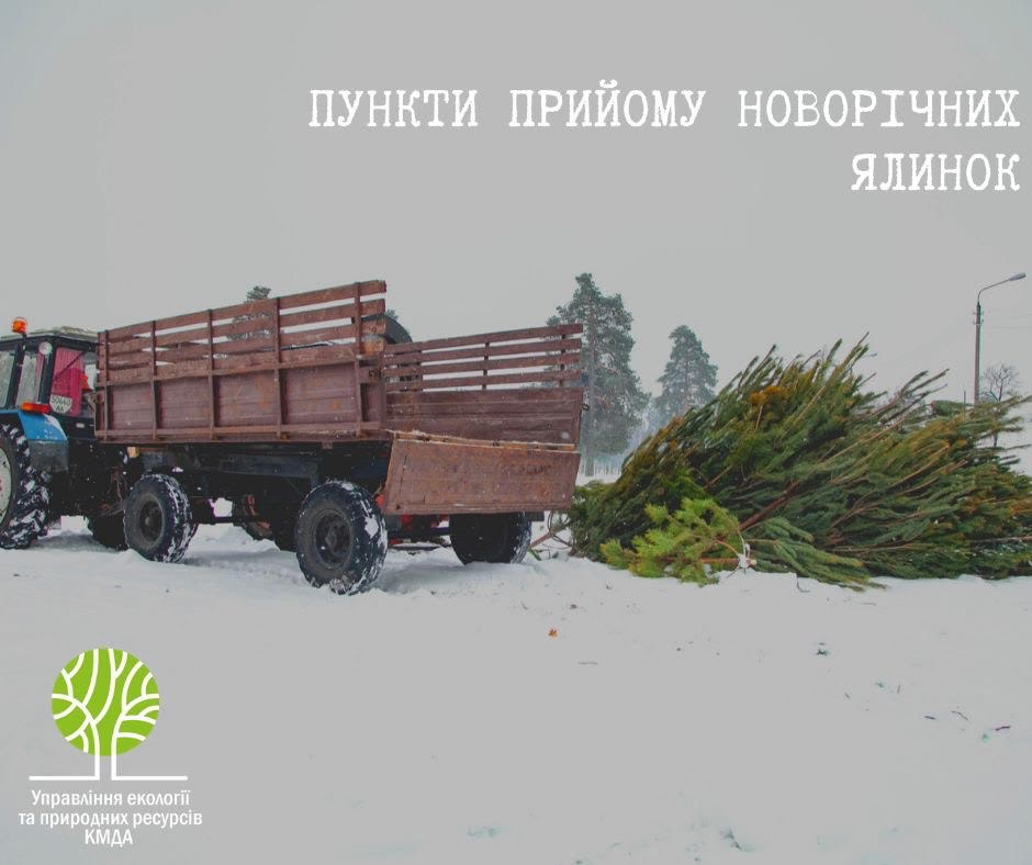 У Києві запрацювали 15 пунктів прийому новорічних ялинок, адреси -  - 80956618 2468760163247406 8962324663338270720 n