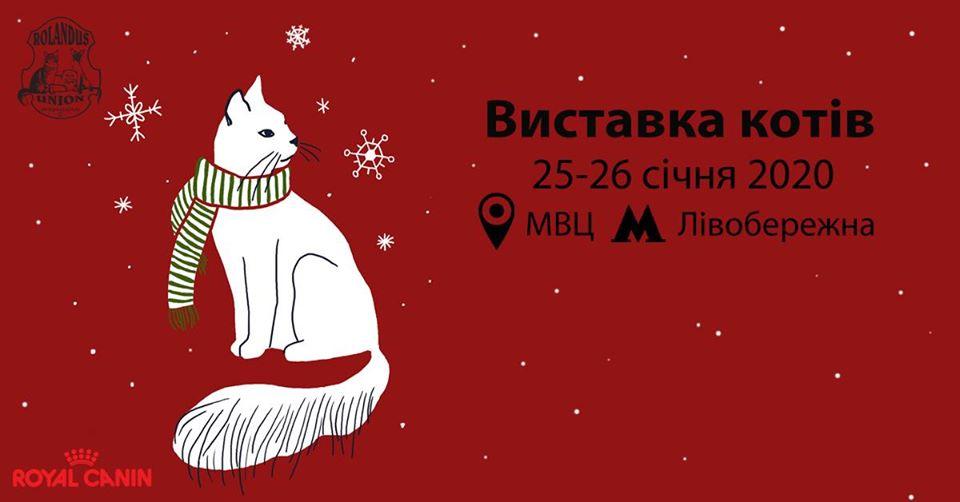 Наприкінці січня у Києві відбудеться виставка котів -  - 82099931 2780894741932258 8662006024422555648 o