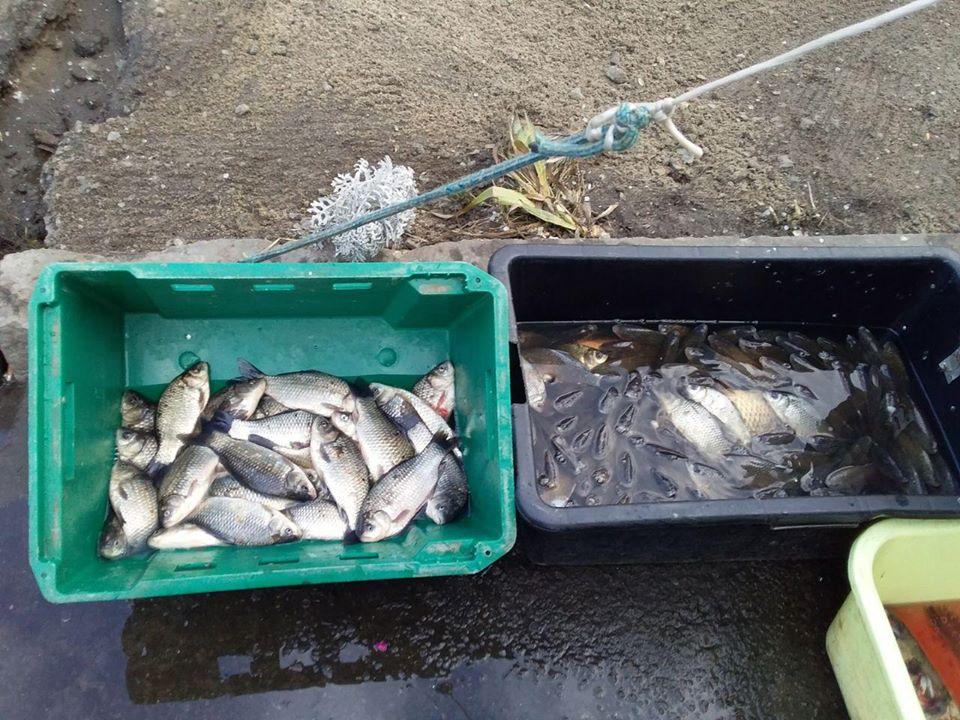 Незаконна риболовля: 25 порушень за день у Києві і Вишгороді - столиця, рибоохоронний патруль, Риболовля, рибалки, риба, порушники, порушення, київщина, Київ, Вишгород - 82502855 2705580602851781 8488332798401183744 o