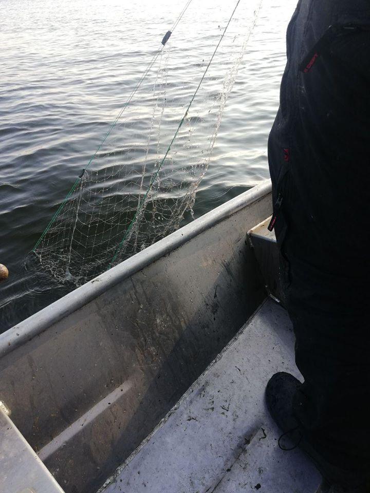 Інспектори рибоохоронного патруля Київщини продовжують виявляти порушників -  - 82704787 2720820514661123 1396040645247762432 o