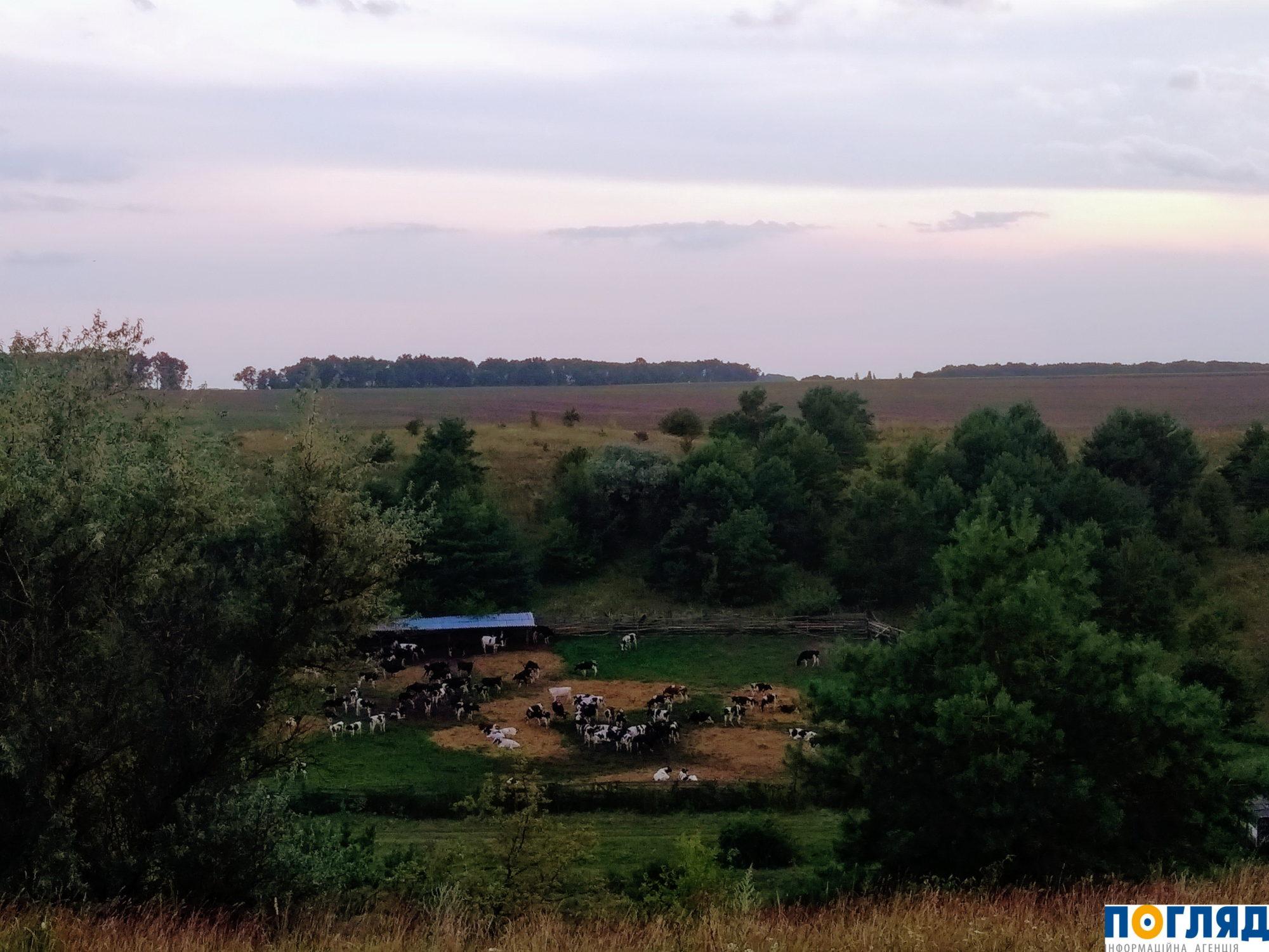 2020-й – рік сільського туризму в Україні - Україна, сільська місцевість, село - IMG 20190807 1951572 2000x1500