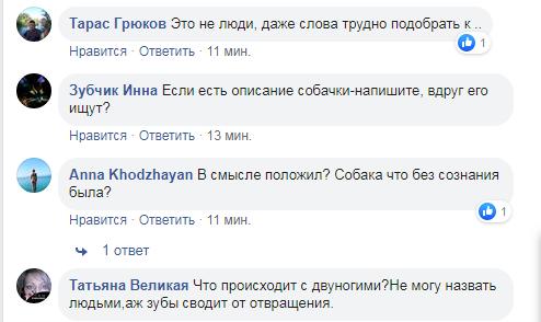 У Києві тварина загинула під колесами потяга, підозрюють живодерів -  - Screenshot 14