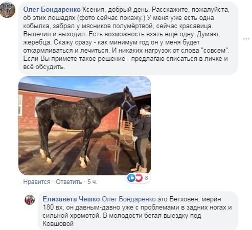 """Коні не винні: на Обухівщині колишній заміський комплекс перетворився на """"тваринний концтабір"""" -  - Screenshot 6"""