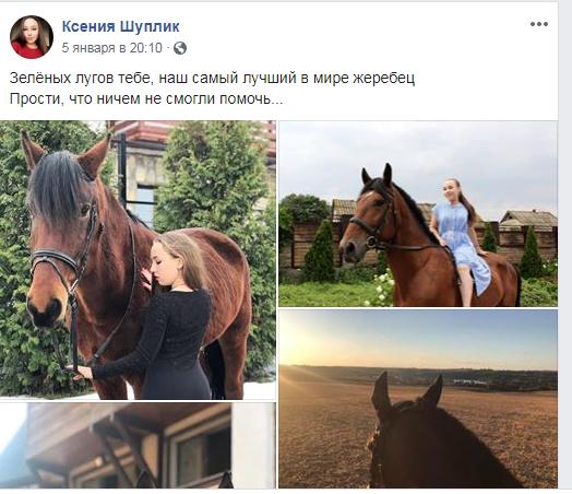 """Коні не винні: на Обухівщині колишній заміський комплекс перетворився на """"тваринний концтабір"""" -  - Screenshot 8"""