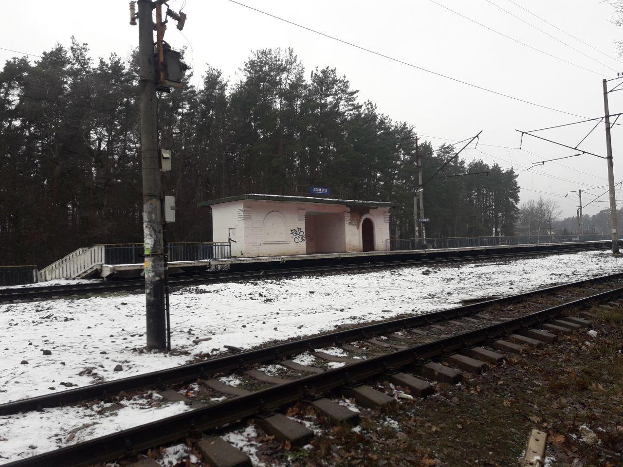 photo_2020-01-10_14-21-19 Київщина: біля станції Лісова Буча електричка насмерть збила жінку