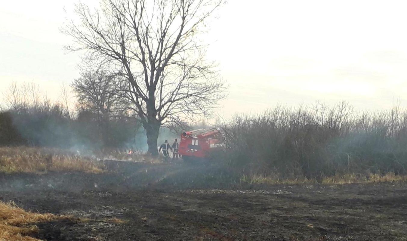 01-1 На Київщині масштабні пожежі сухостою: на Бородянщині горіло більше 23,5 га трави