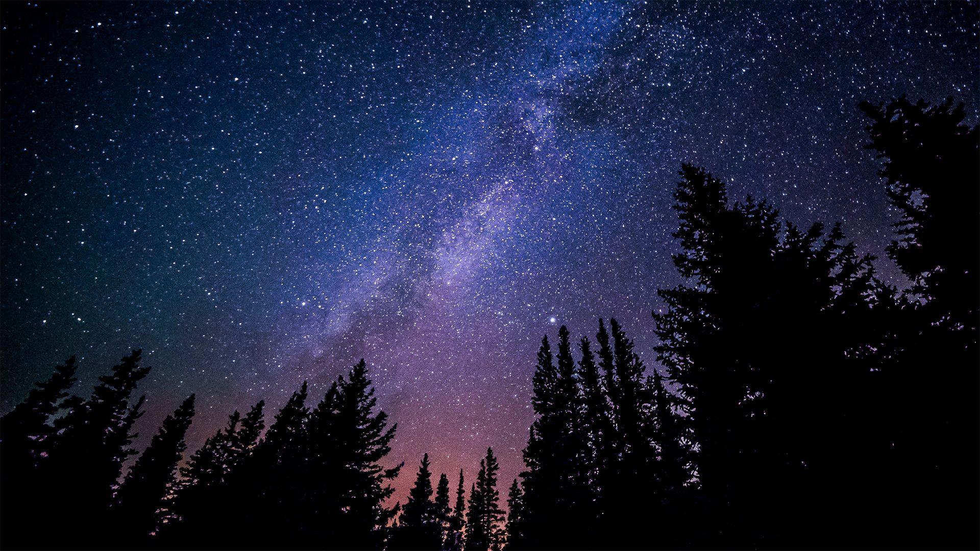 Путівник зоряним небом: що можна побачити вночі у лютому - зорі - 02 nebo3