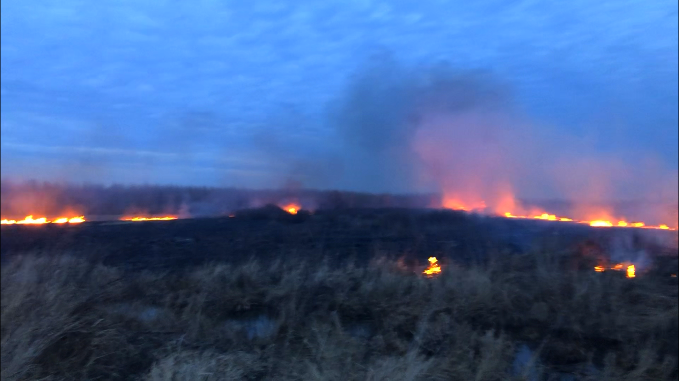04 На Київщині масштабні пожежі сухостою: на Бородянщині горіло більше 23,5 га трави