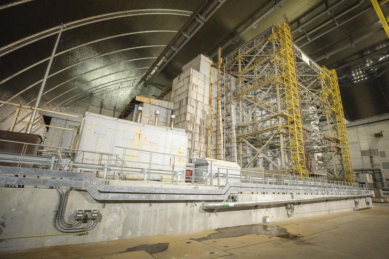 На основі знайденого у Чорнобилі грибка можна створити ліки від радіації