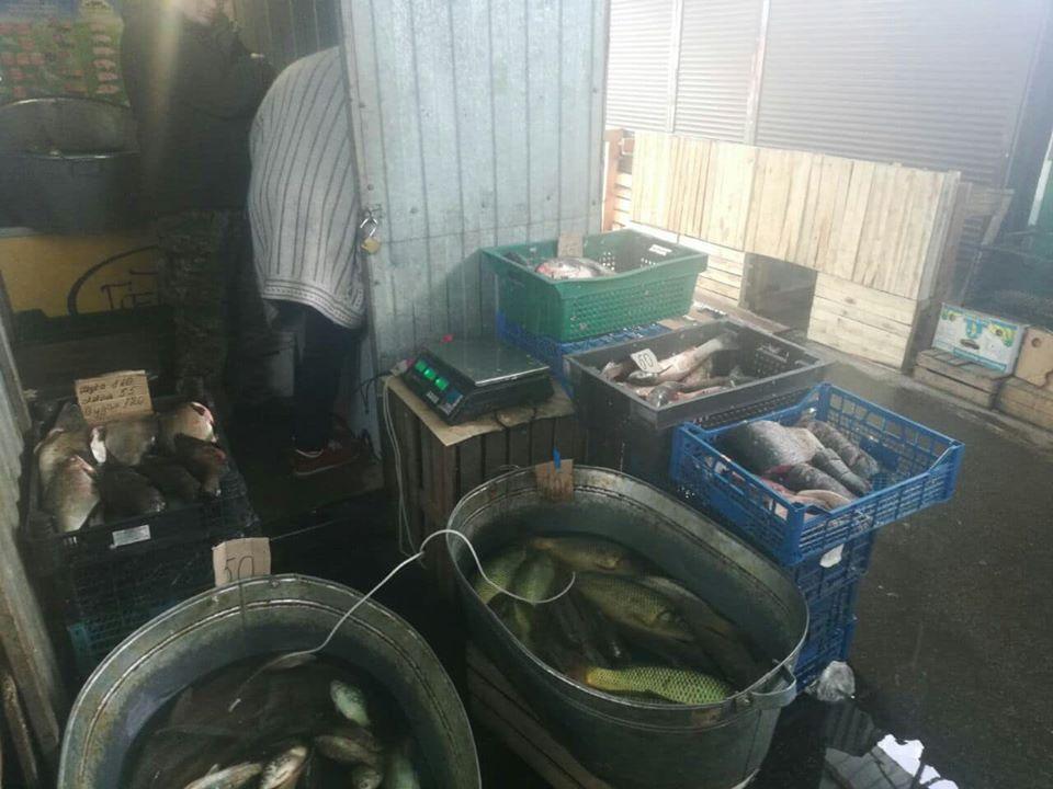84840256_2750532465023261_7139127152313630720_o 70 кг незаконно виловленої риби виявили у Гостомелі та Бучі