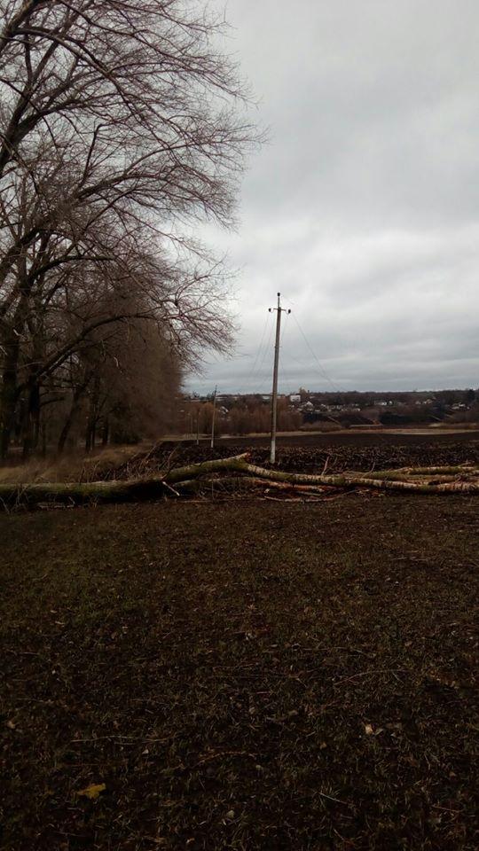85099220_1605489332935183_6362188665346588672_o У Київській області через сильний вітер знеструмлені 26 населених пунктів