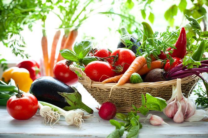 90bfc7e19061343465d1d1162cef0c5e-14988 Овочі здешевіють, а хліб подорожчає :  українські аграрії прогнозують наслідки цьогорічної зими