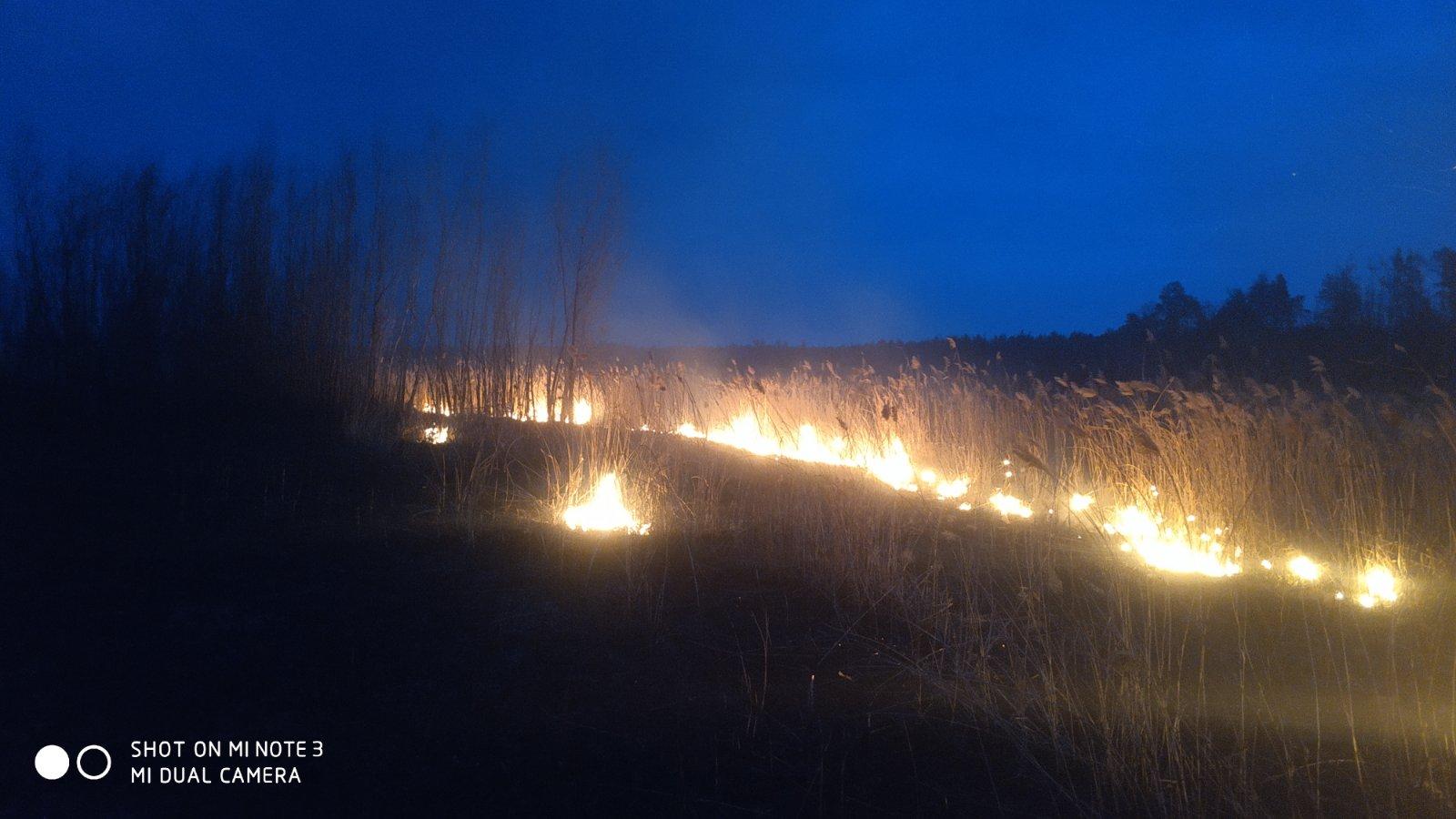 Irp-suh-trava-2 Пекельний вікенд: 5 загорань трав'яного настилу приборкали рятувальники Ірпінського регіону