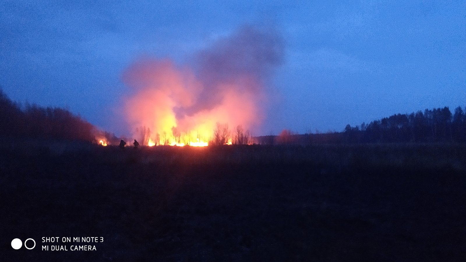 Irp-suh-trava-3 Пекельний вікенд: 5 загорань трав'яного настилу приборкали рятувальники Ірпінського регіону