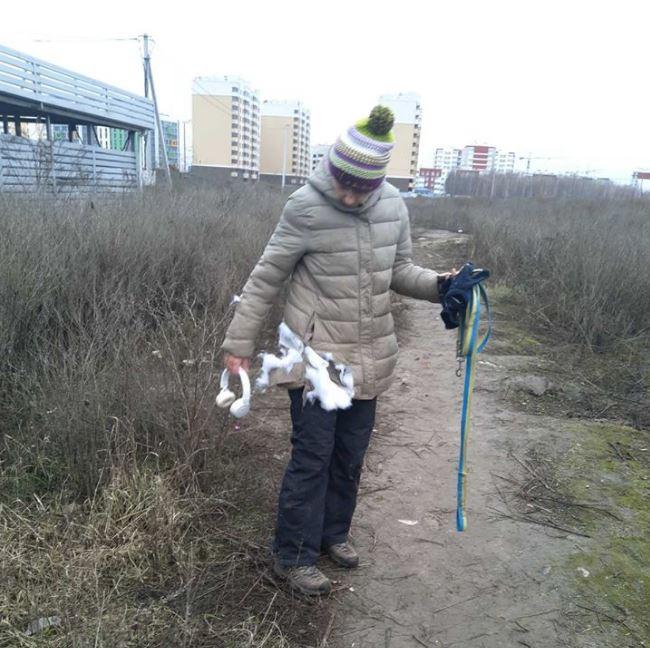 Напад собак на жінок у Крюківщині: до адмінвідповідальності притягли чоловіка (18+)