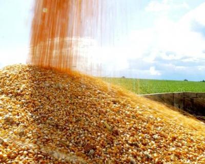 a4ab97dcf531ab2afd5021e6efad4395 Овочі здешевіють, а хліб подорожчає :  українські аграрії прогнозують наслідки цьогорічної зими