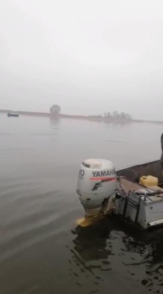 ryba3 На Вишгородщині за два дні спіймали 13 браконьєрів