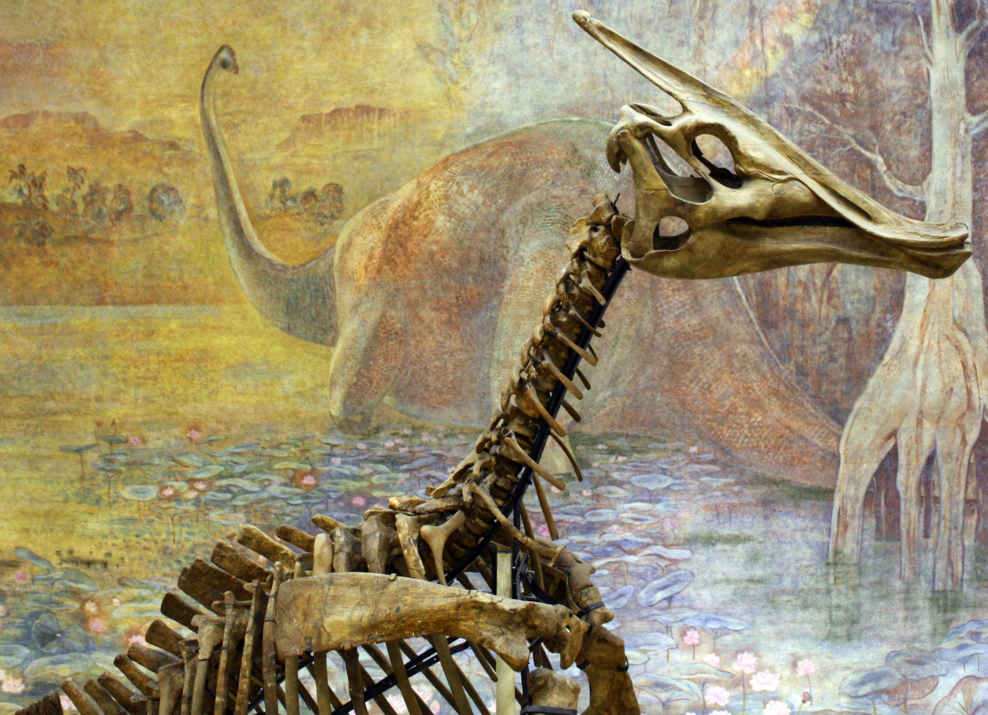 В останках динозавра вперше виявлена «жива» ДНК - ДНК, динозаври - 03 dnk2 2000x1448