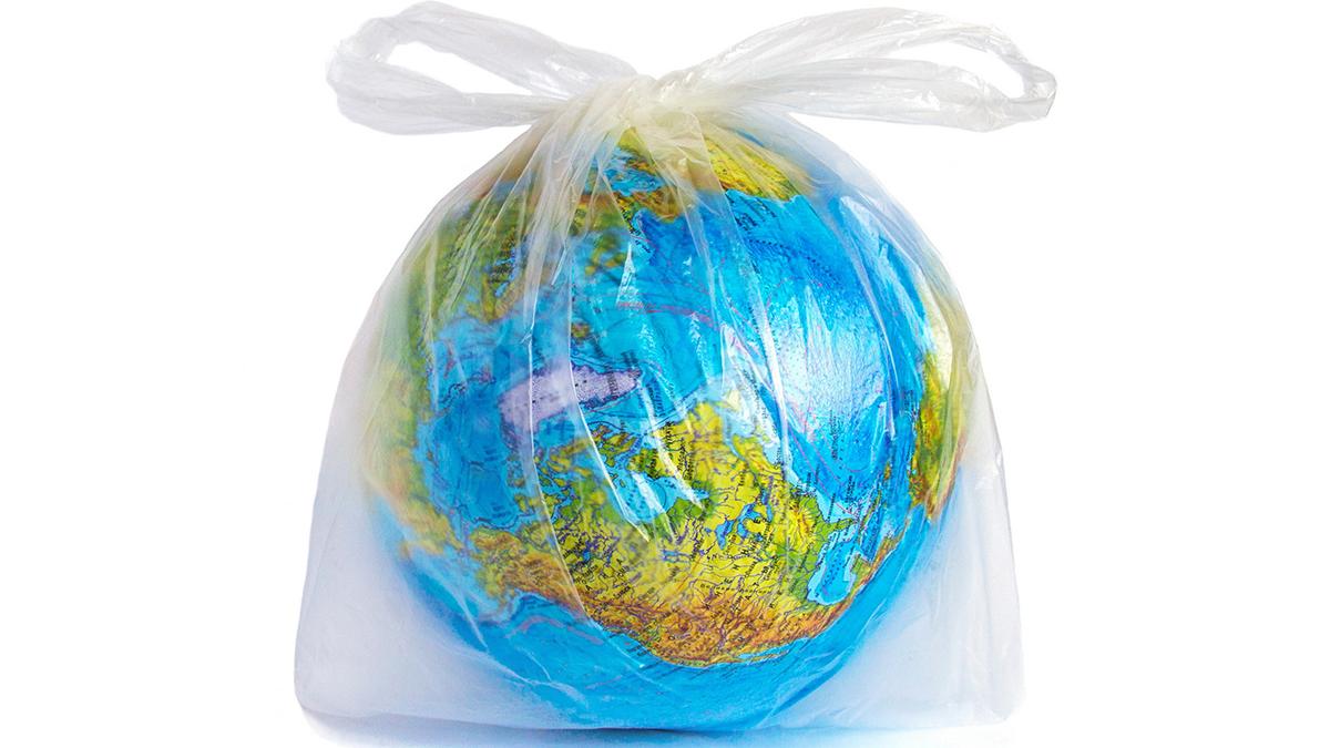 Гусінь врятує світ: випадкове відкриття може змінити екологічну ситуацію на планеті - пластик, винахід - 06 gusenytsa3