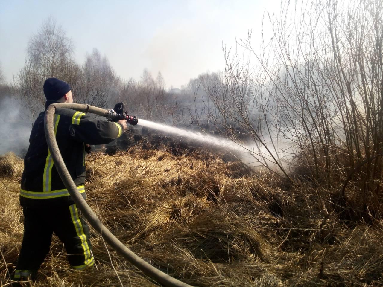 За добу екосистема  Київщини горіла 101 раз -  - 1 7