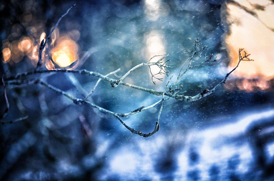 Після рекордного тепла на Київщину прийдуть заморозки - похолодання, погода - 12 zamorozky