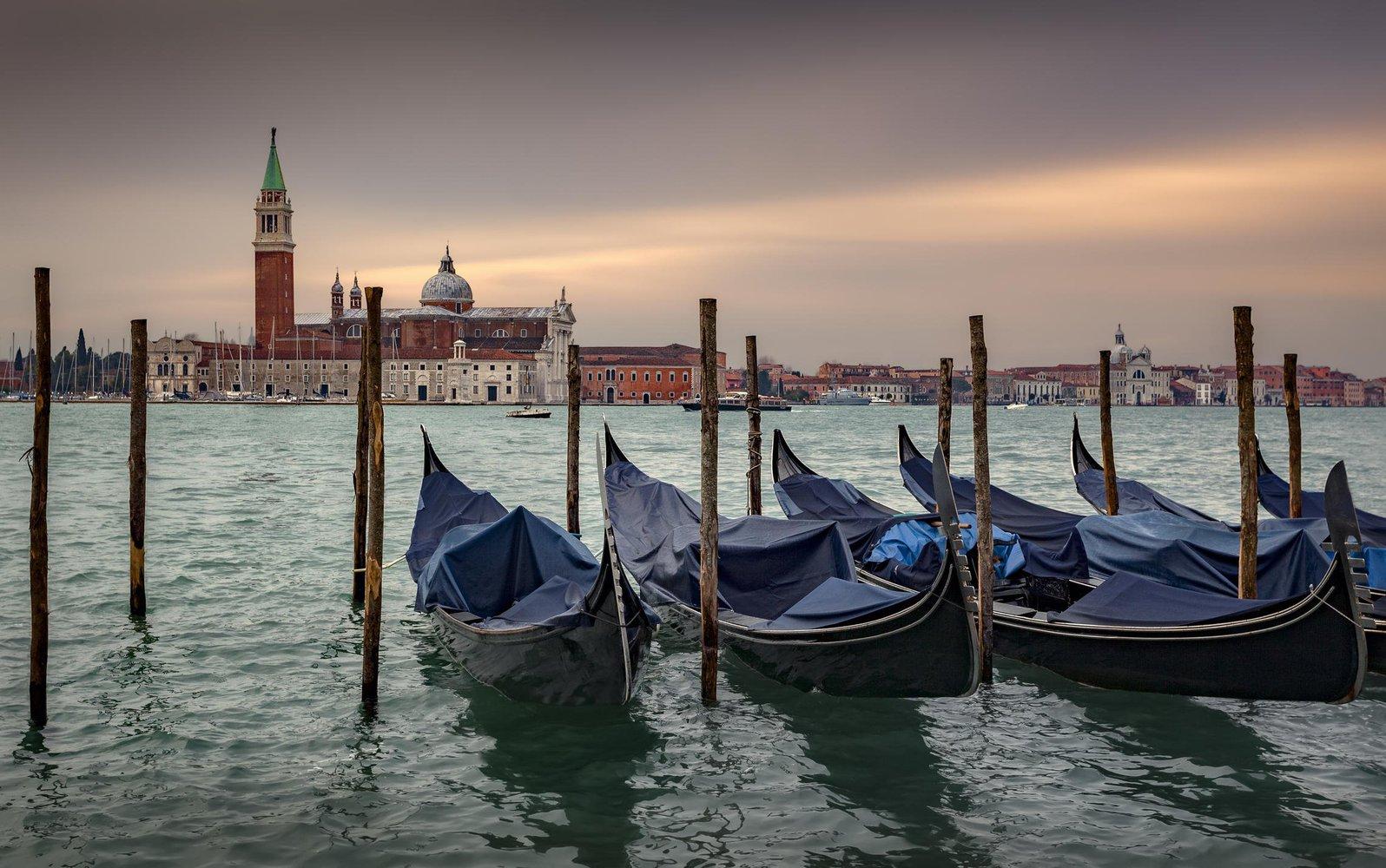 Карантин у Венеції: вода у каналах стала прозорою, з'явилася риба і прилетіли лебеді - коронавірус, карантин, Італія - 20 venetsyya