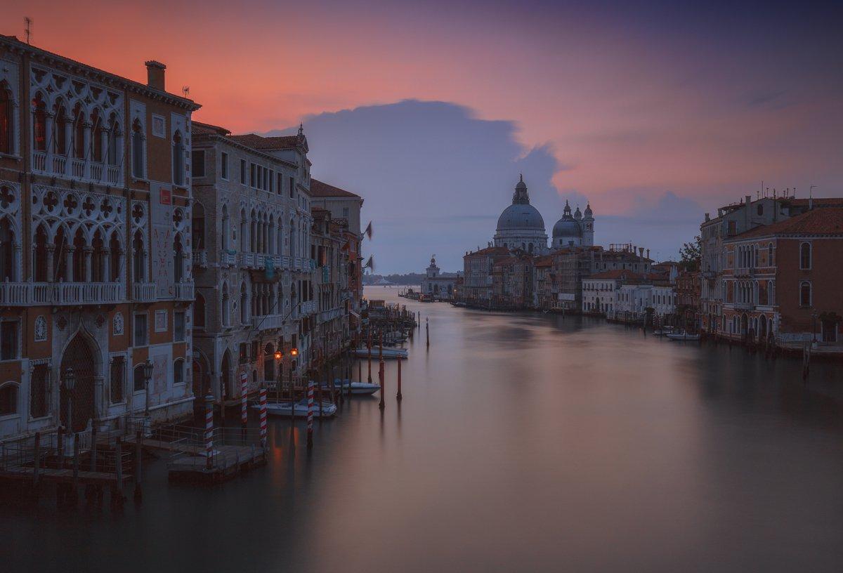 Карантин у Венеції: вода у каналах стала прозорою, з'явилася риба і прилетіли лебеді - коронавірус, карантин, Італія - 20 venetsyya2