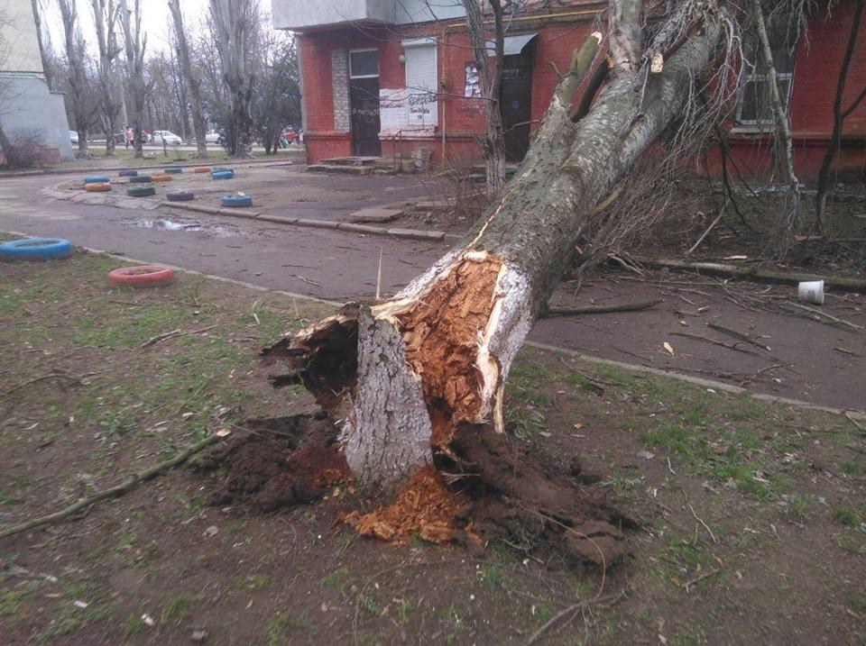 Березневі шквали: правоохоронці Київщини надали поради у негоду -  - 212448068fc91d270bfec1a80b002cb9